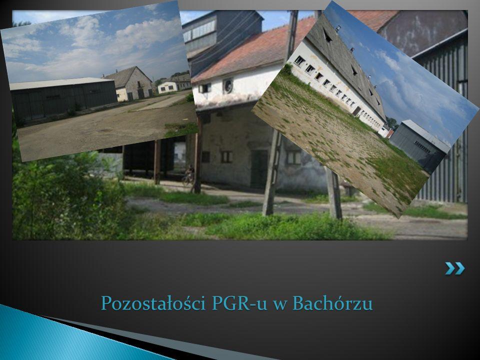 Pozostałości PGR-u w Bachórzu