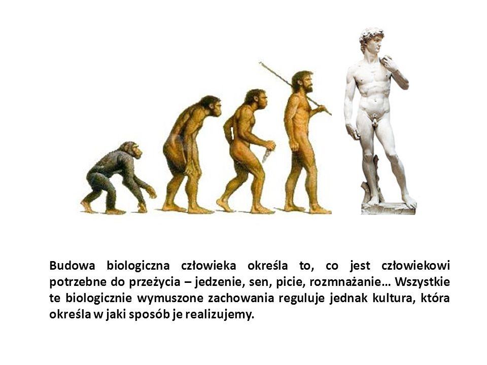 Budowa biologiczna człowieka określa to, co jest człowiekowi potrzebne do przeżycia – jedzenie, sen, picie, rozmnażanie… Wszystkie te biologicznie wymuszone zachowania reguluje jednak kultura, która określa w jaki sposób je realizujemy.