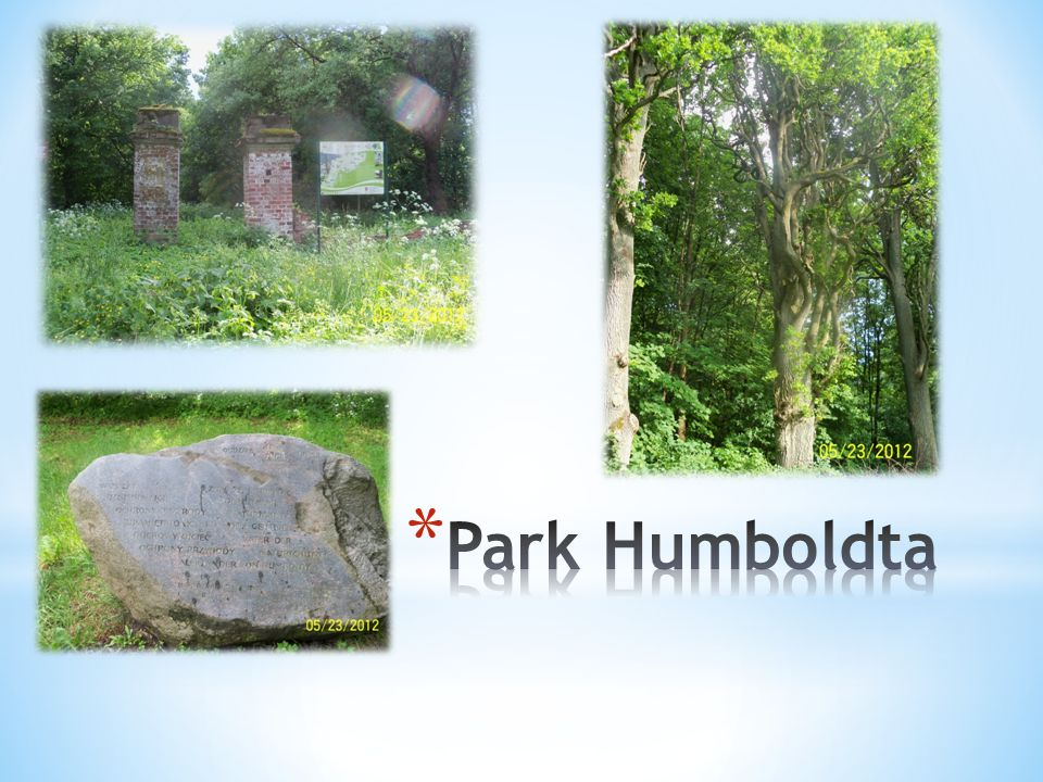 Park Humboldta