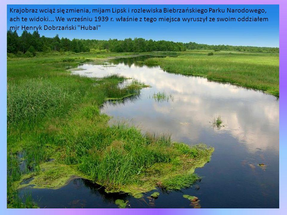 Krajobraz wciąż się zmienia, mijam Lipsk i rozlewiska Biebrzańskiego Parku Narodowego, ach te widoki...