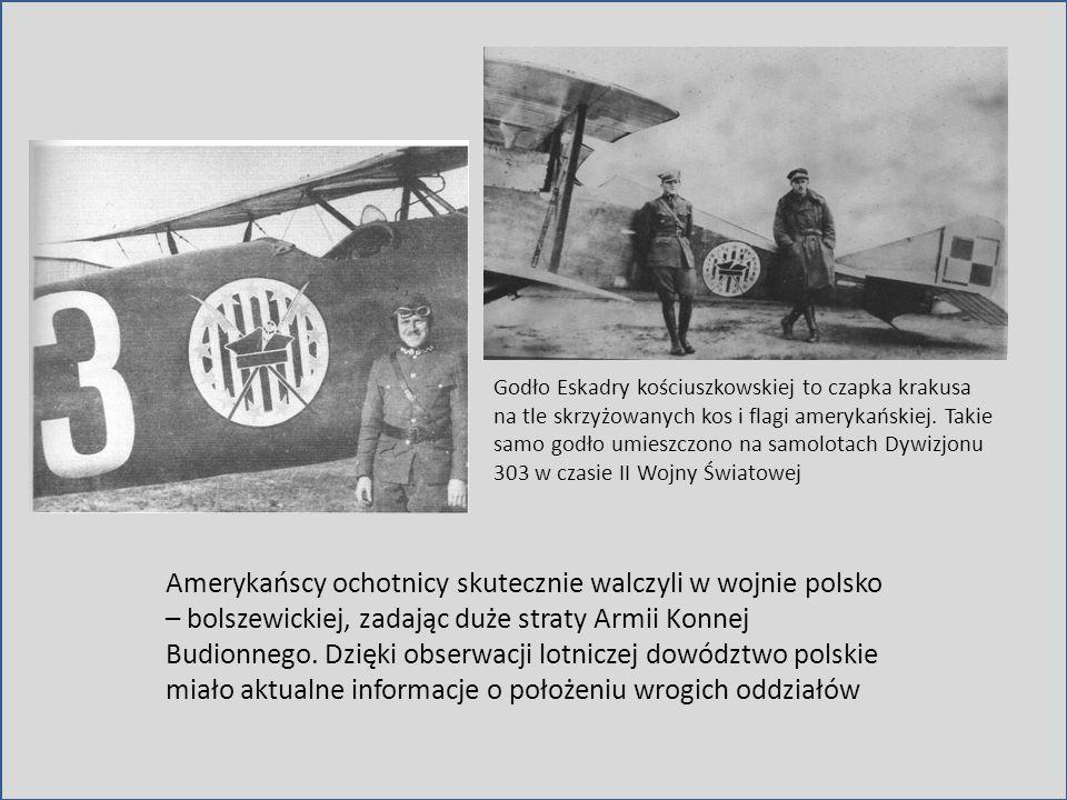 Godło Eskadry kościuszkowskiej to czapka krakusa na tle skrzyżowanych kos i flagi amerykańskiej. Takie samo godło umieszczono na samolotach Dywizjonu 303 w czasie II Wojny Światowej