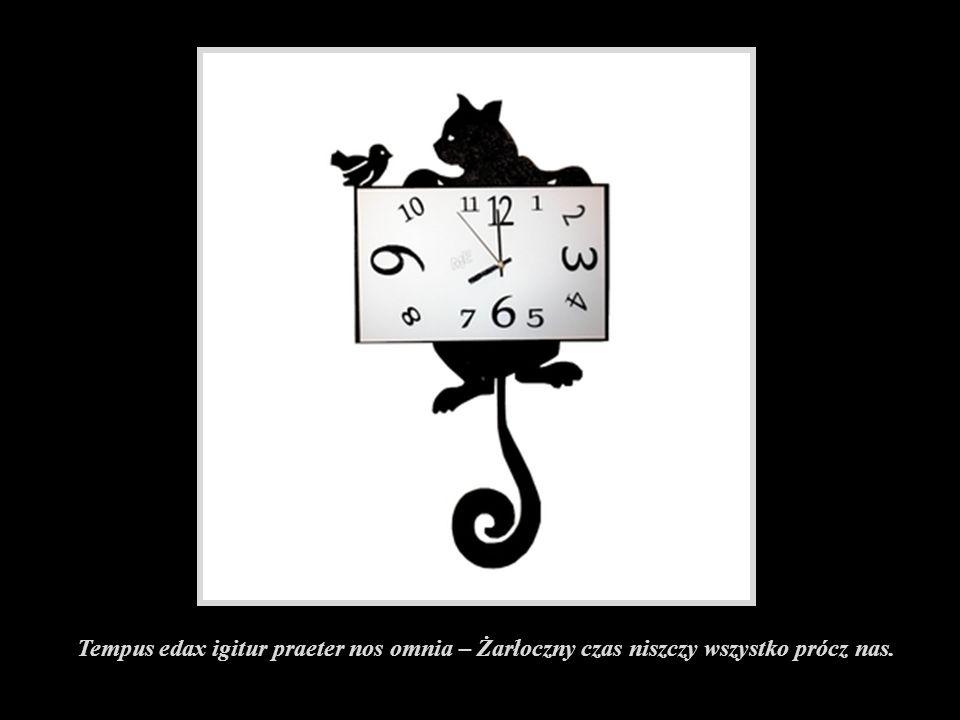 Tempus edax igitur praeter nos omnia – Żarłoczny czas niszczy wszystko prócz nas.