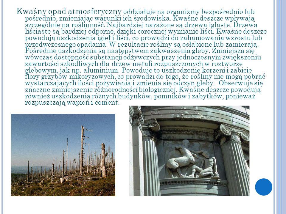Kwaśny opad atmosferyczny oddziałuje na organizmy bezpośrednio lub pośrednio, zmieniając warunki ich środowiska.
