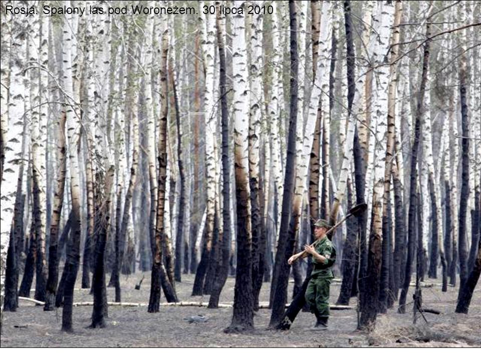 Rosja. Spalony las pod Woroneżem. 30 lipca 2010