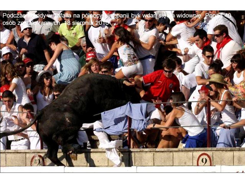 Podczas korridy w Tafalla na północy Hiszpanii byk wdarł się na widownię.
