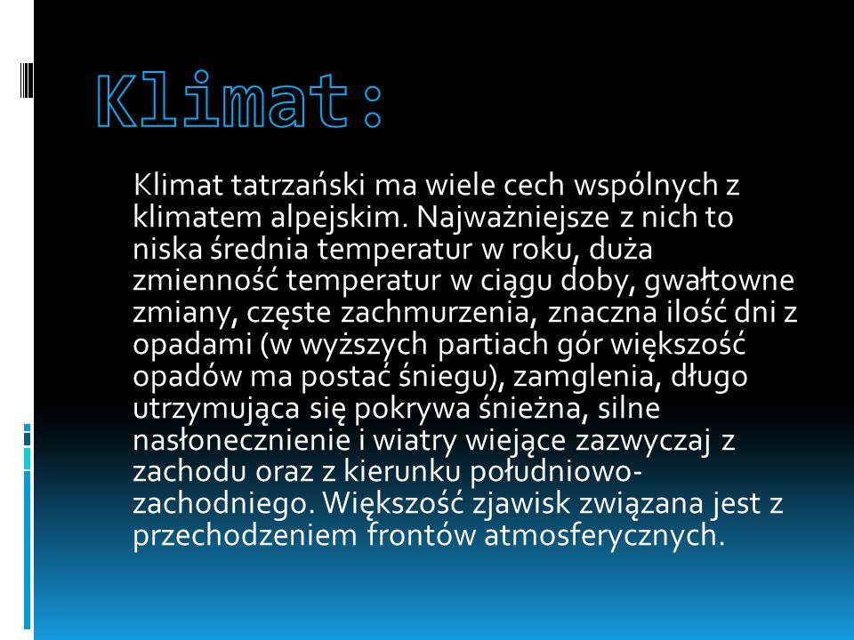 Klimat: