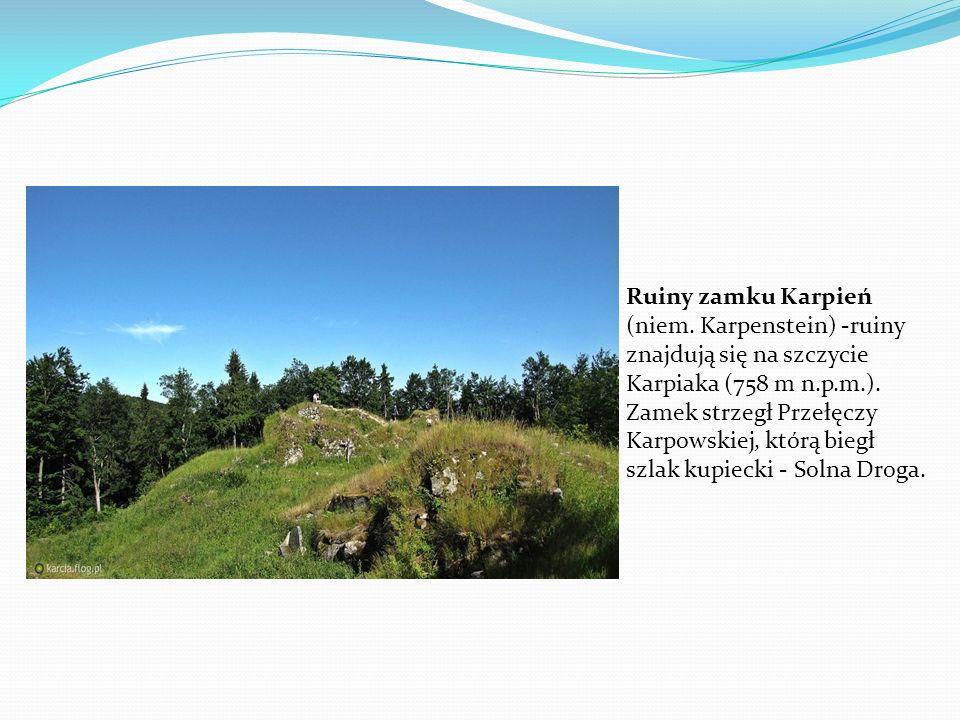 Ruiny zamku Karpień (niem