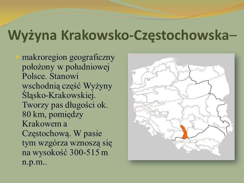Wyżyna Krakowsko-Częstochowska–