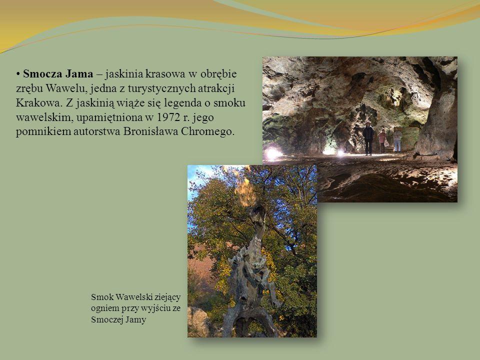 Smocza Jama – jaskinia krasowa w obrębie zrębu Wawelu, jedna z turystycznych atrakcji Krakowa. Z jaskinią wiąże się legenda o smoku wawelskim, upamiętniona w 1972 r. jego pomnikiem autorstwa Bronisława Chromego.