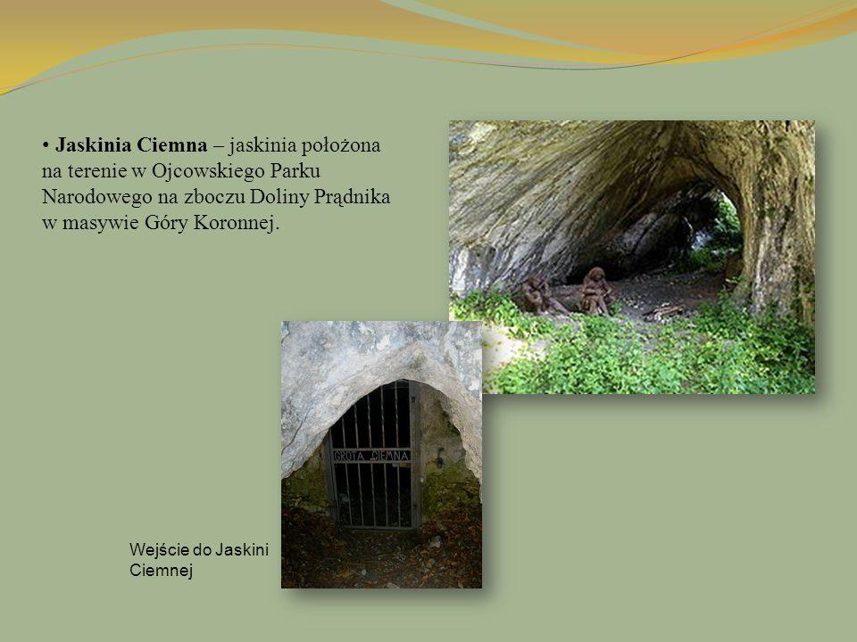 Jaskinia Ciemna – jaskinia położona na terenie w Ojcowskiego Parku Narodowego na zboczu Doliny Prądnika w masywie Góry Koronnej.