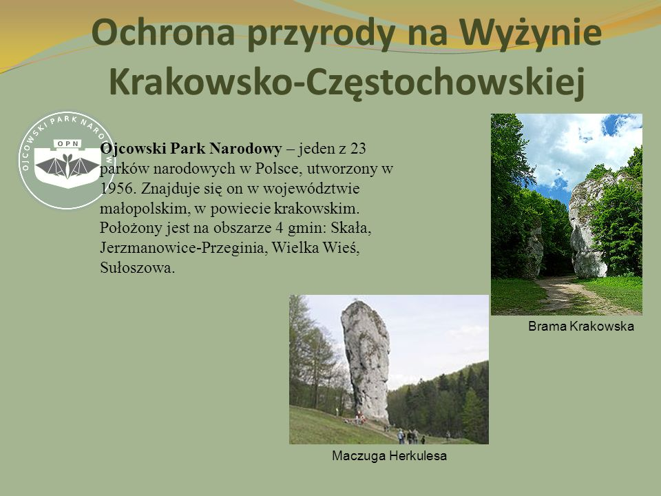 Ochrona przyrody na Wyżynie Krakowsko-Częstochowskiej