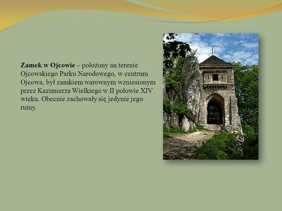 Zamek w Ojcowie – położony na terenie Ojcowskiego Parku Narodowego, w centrum Ojcowa, był zamkiem warownym wzniesionym przez Kazimierza Wielkiego w II połowie XIV wieku.