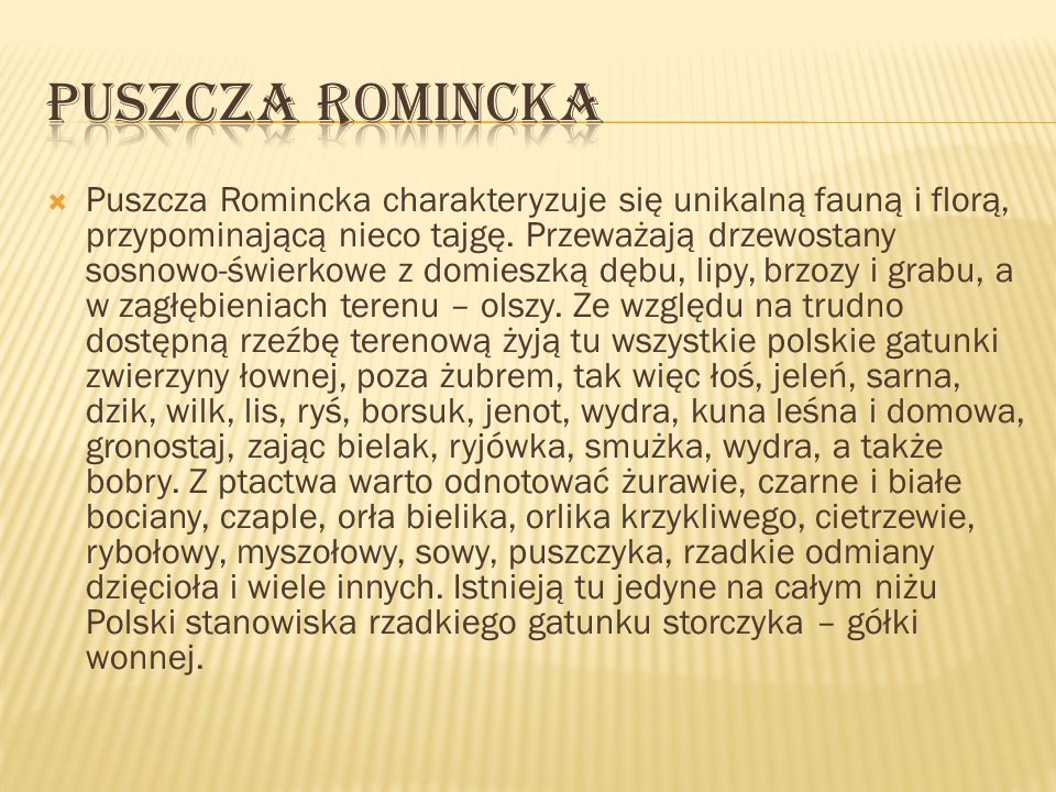 PUSZCZA ROMINCKA