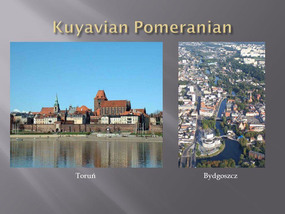 Kuyavian Pomeranian Toruń Bydgoszcz