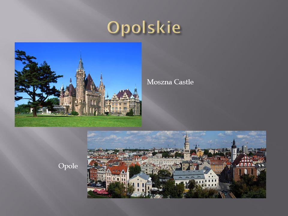 Opolskie Moszna Castle Opole
