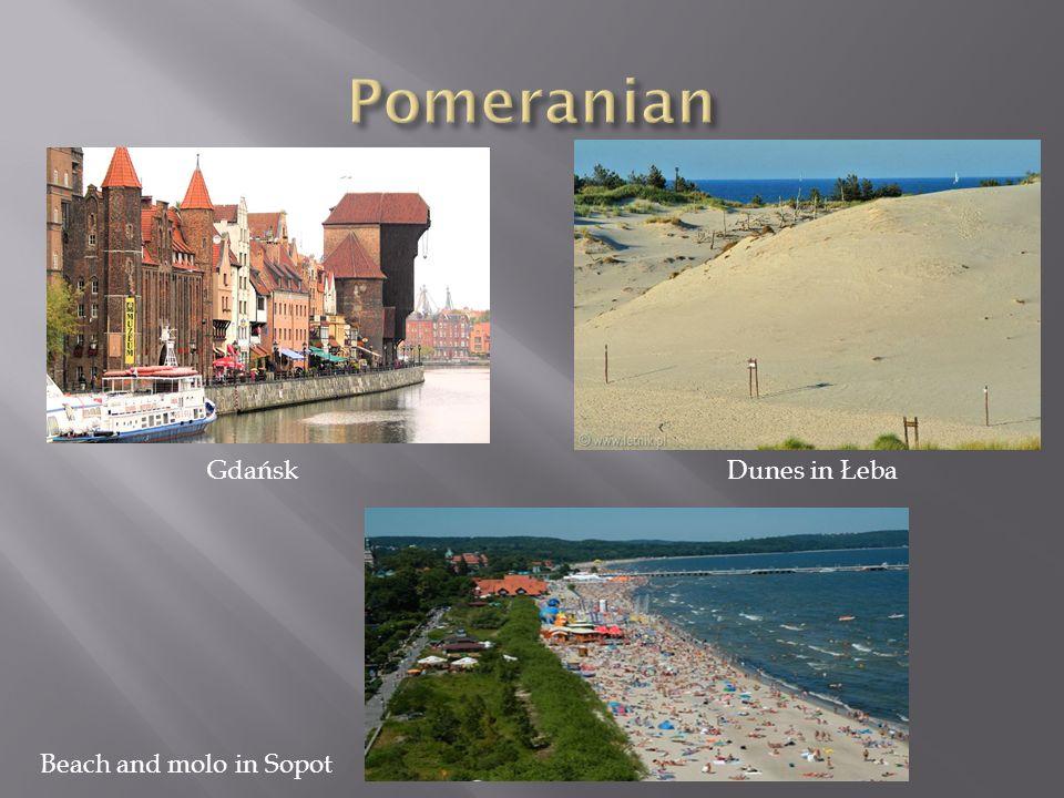 Pomeranian Gdańsk Dunes in Łeba Beach and molo in Sopot