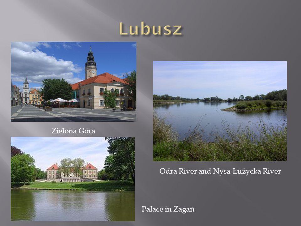 Odra River and Nysa Łużycka River
