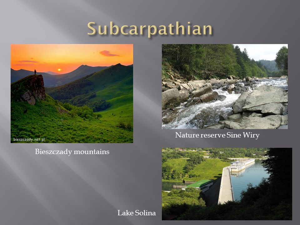 Subcarpathian Nature reserve Sine Wiry Bieszczady mountains