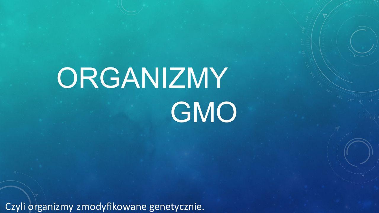 Organizmy GMO Czyli organizmy zmodyfikowane genetycznie.