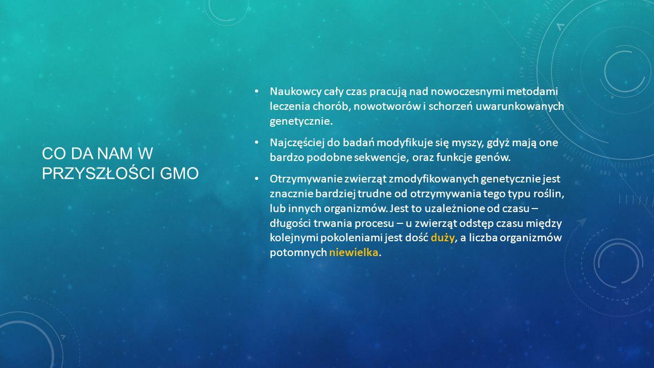 Co da nam w przyszłości GMO