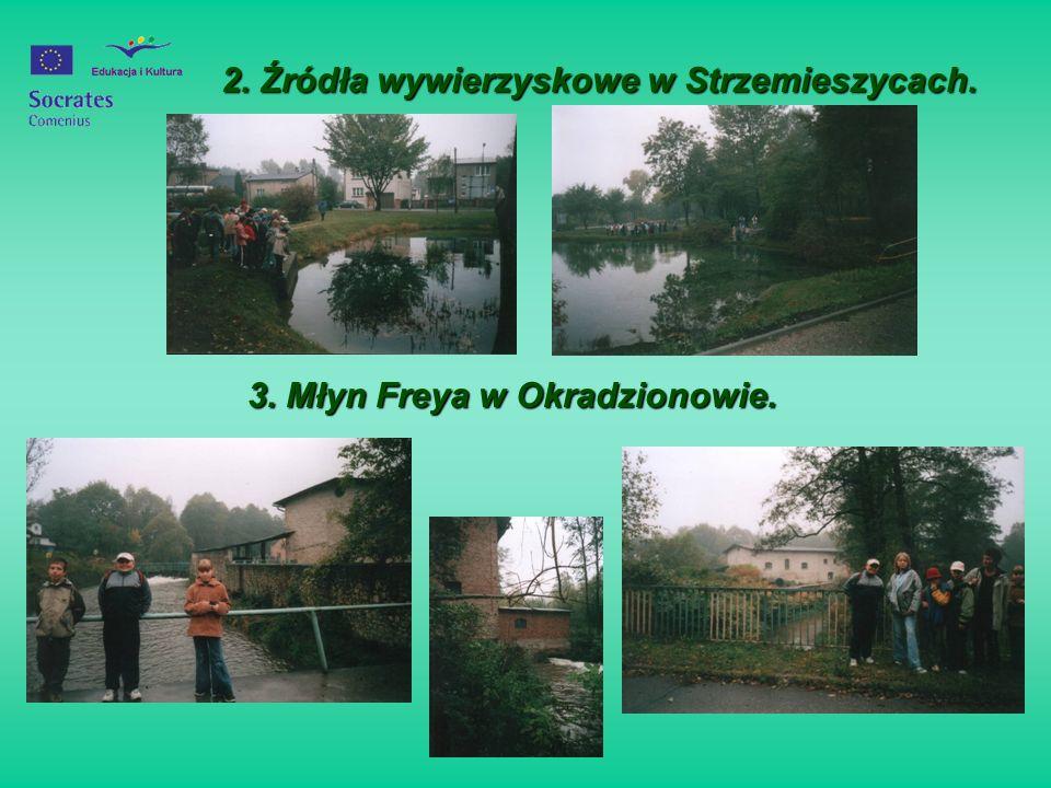 2. Źródła wywierzyskowe w Strzemieszycach.