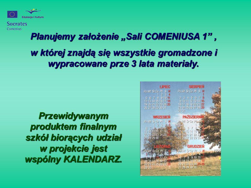"""Planujemy założenie """"Sali COMENIUSA 1 ,"""