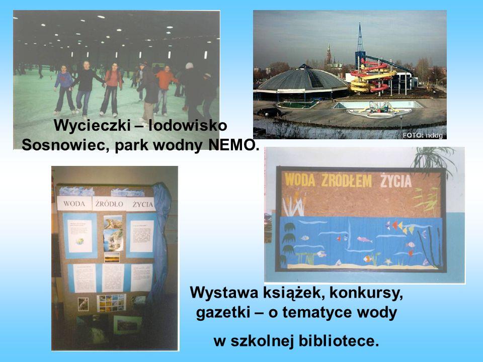Wycieczki – lodowisko Sosnowiec, park wodny NEMO.