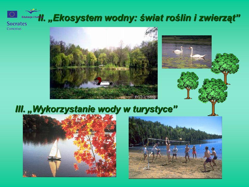 """II. """"Ekosystem wodny: świat roślin i zwierząt"""