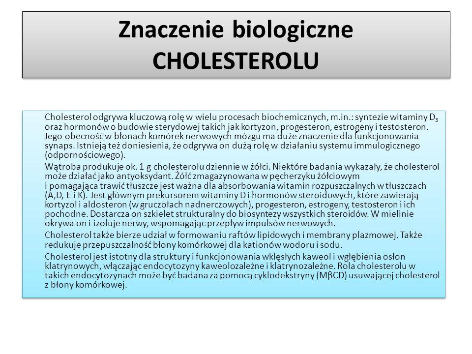 Znaczenie biologiczne CHOLESTEROLU
