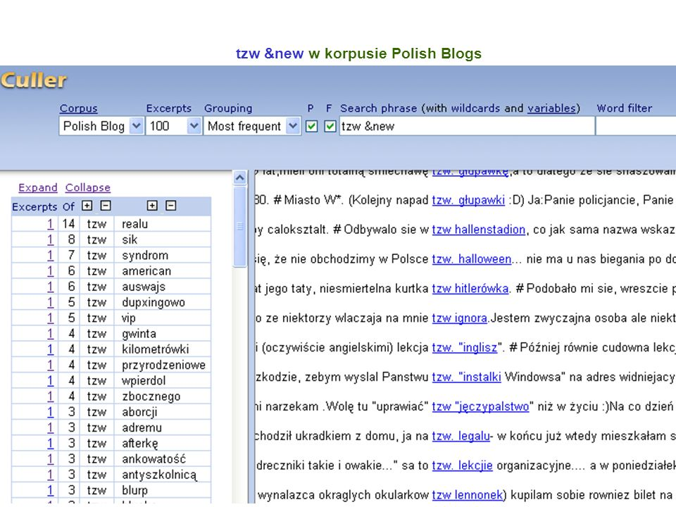 tzw &new w korpusie Polish Blogs