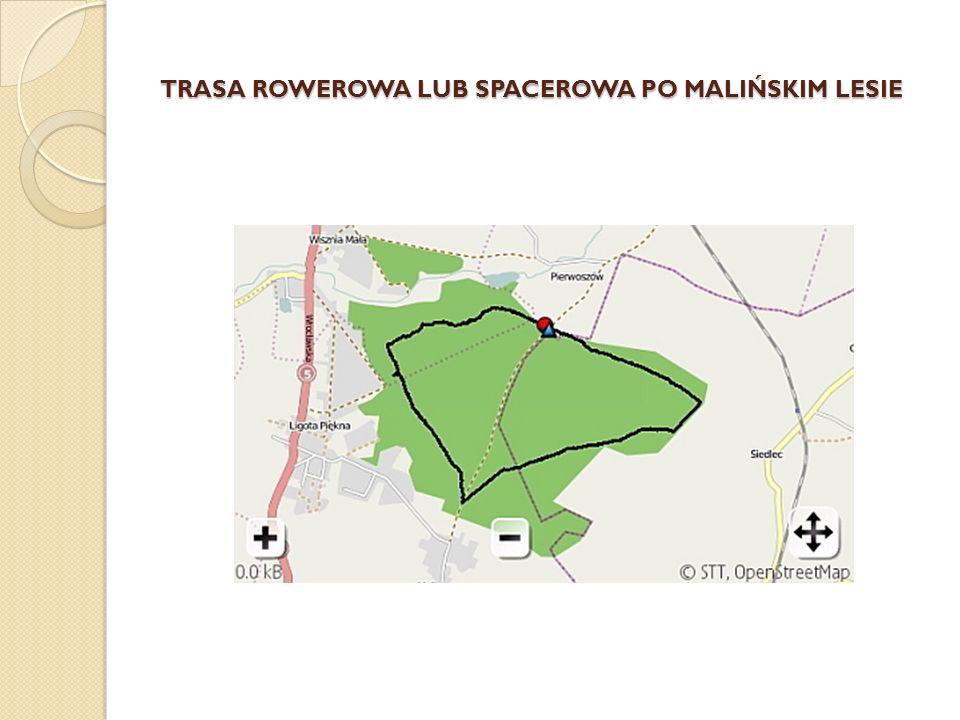 TRASA ROWEROWA LUB SPACEROWA PO MALIŃSKIM LESIE