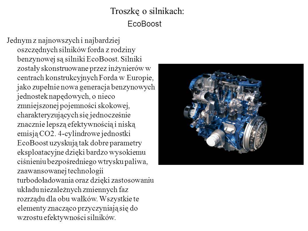 Troszkę o silnikach: EcoBoost