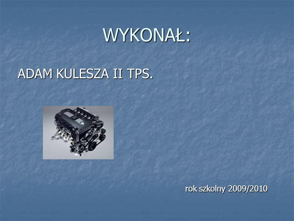 WYKONAŁ: ADAM KULESZA II TPS. rok szkolny 2009/2010