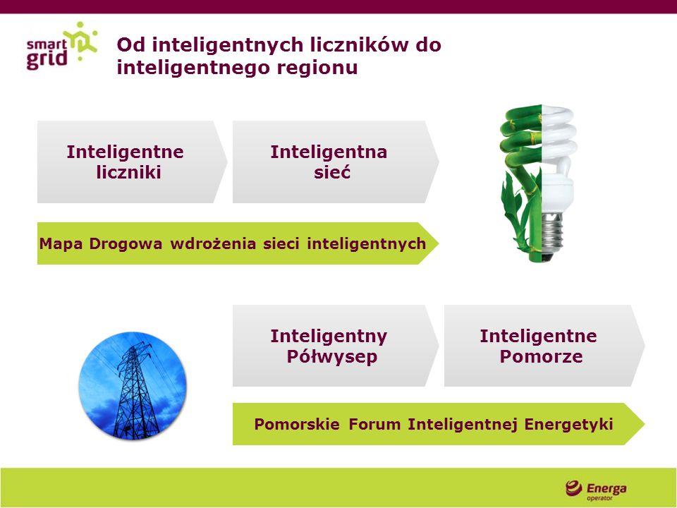 Od inteligentnych liczników do inteligentnego regionu