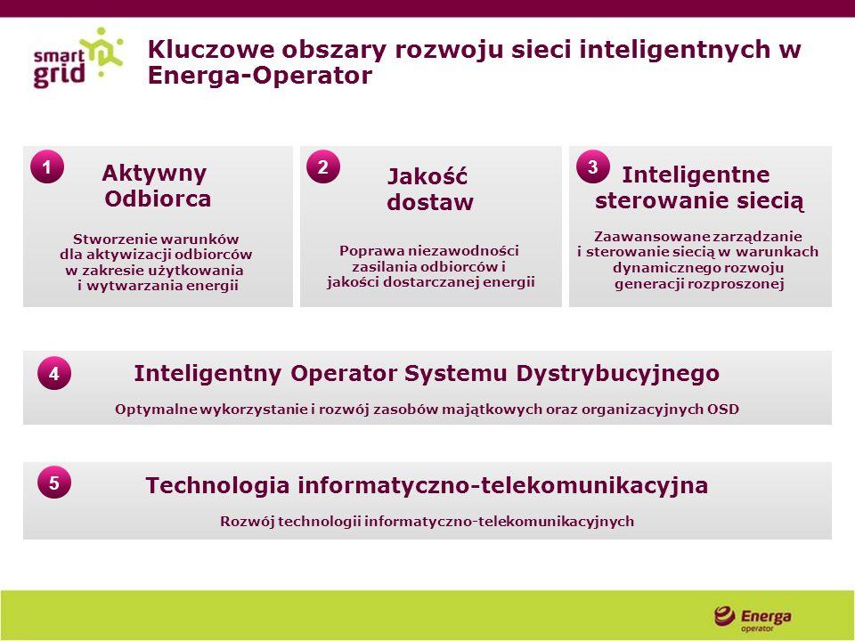 Kluczowe obszary rozwoju sieci inteligentnych w Energa-Operator