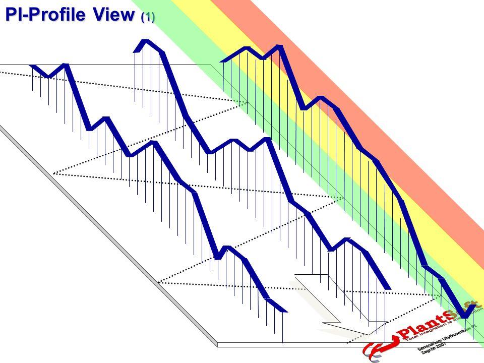 PI-Profile View (1)