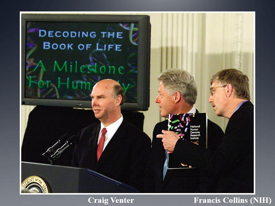 Craig Venter Francis Collins (NIH)
