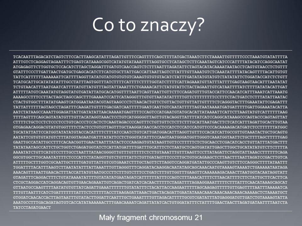 Mały fragment chromosomu 21