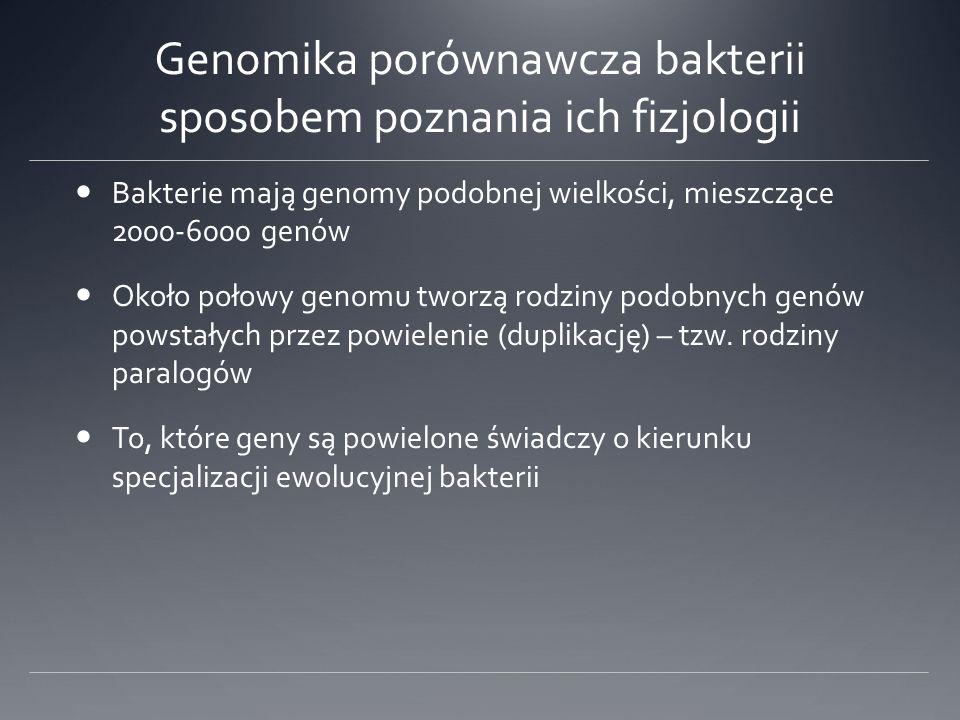 Genomika porównawcza bakterii sposobem poznania ich fizjologii