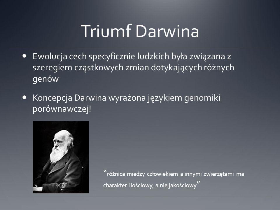 Triumf Darwina Ewolucja cech specyficznie ludzkich była związana z szeregiem cząstkowych zmian dotykających różnych genów.