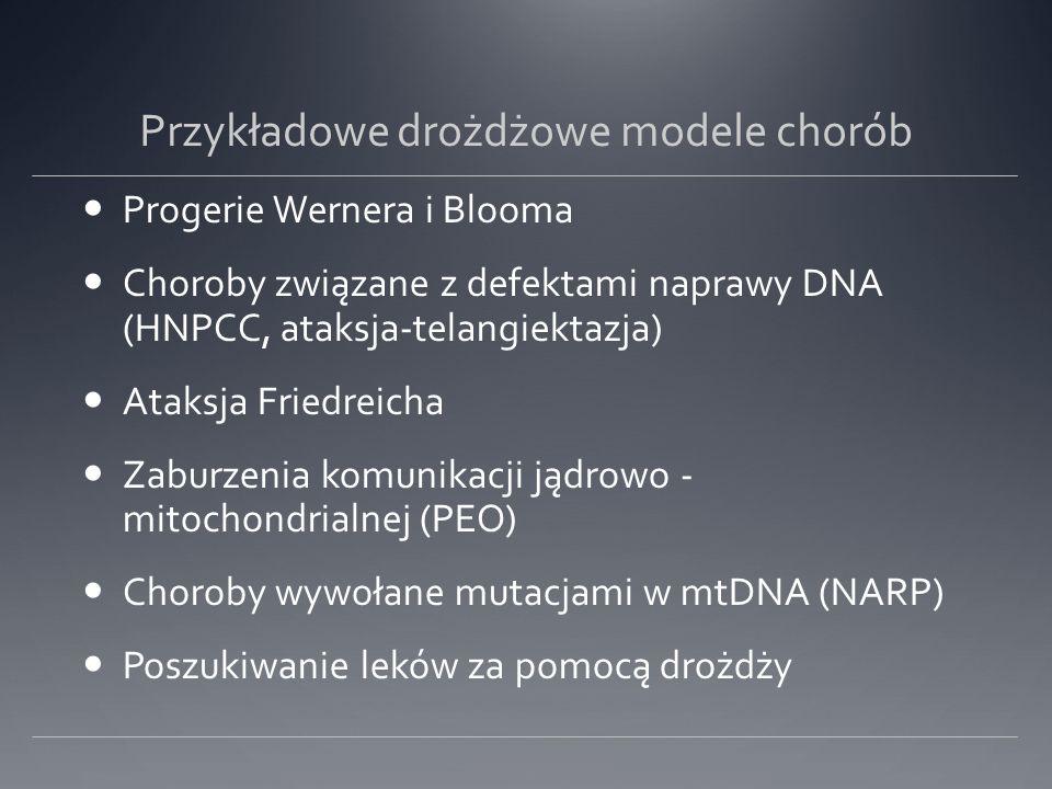 Przykładowe drożdżowe modele chorób