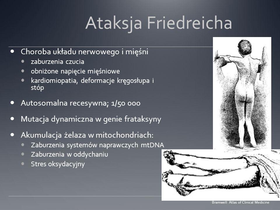 Ataksja Friedreicha Choroba układu nerwowego i mięśni