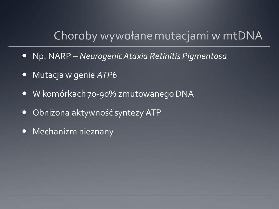 Choroby wywołane mutacjami w mtDNA