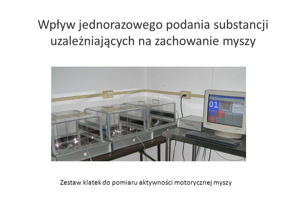 Wpływ jednorazowego podania substancji uzależniających na zachowanie myszy