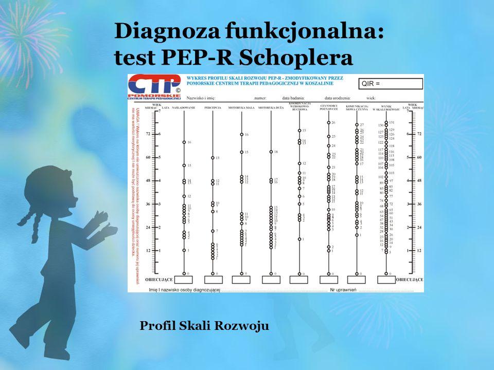 Diagnoza funkcjonalna: test PEP-R Schoplera