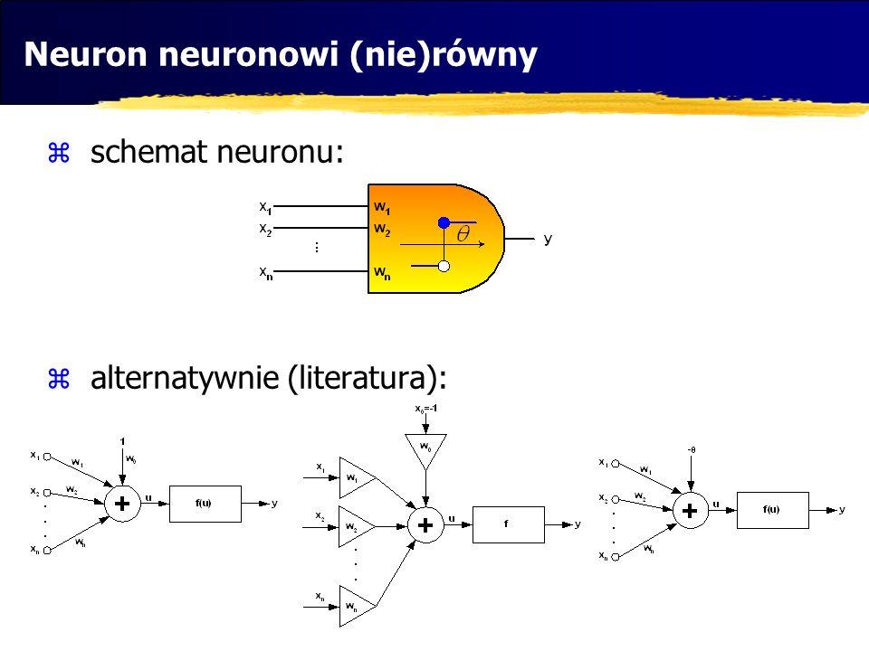 Neuron neuronowi (nie)równy