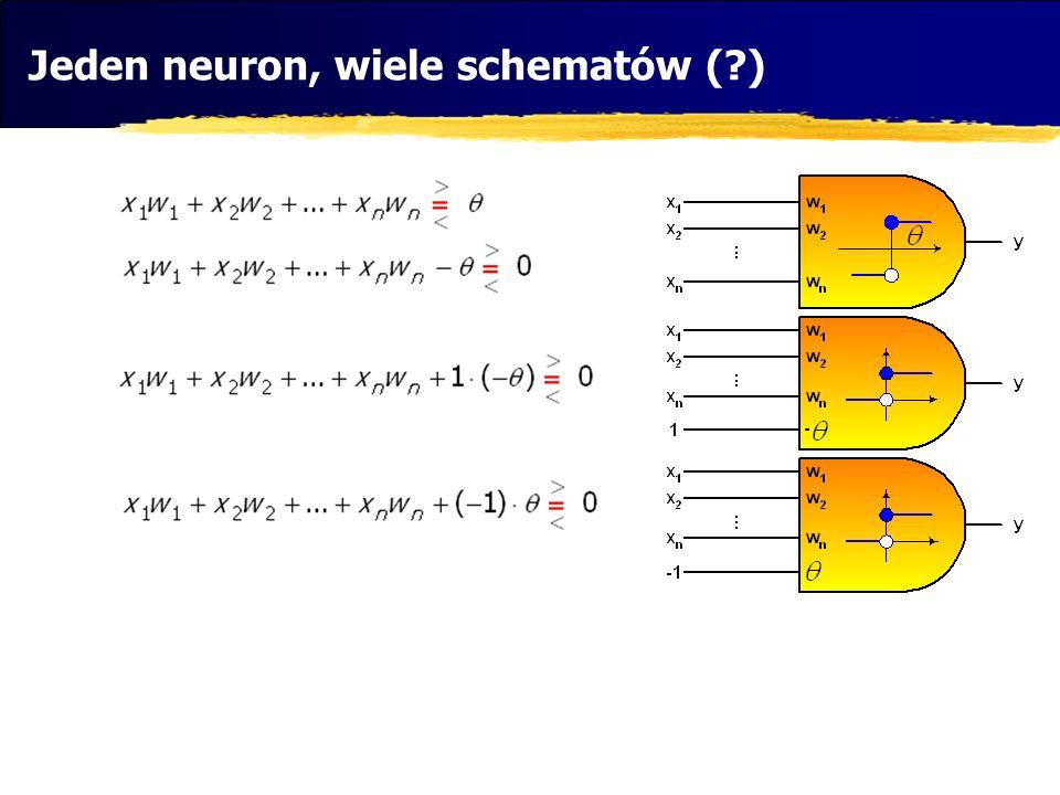 Jeden neuron, wiele schematów ( )