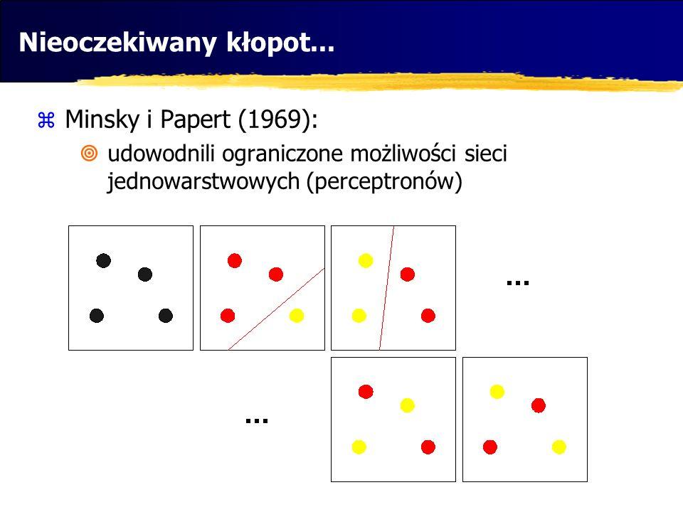 Nieoczekiwany kłopot... Minsky i Papert (1969):