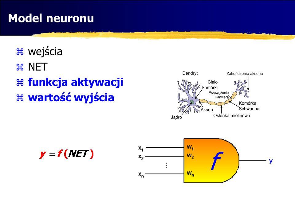 Model neuronu wejścia NET funkcja aktywacji wartość wyjścia