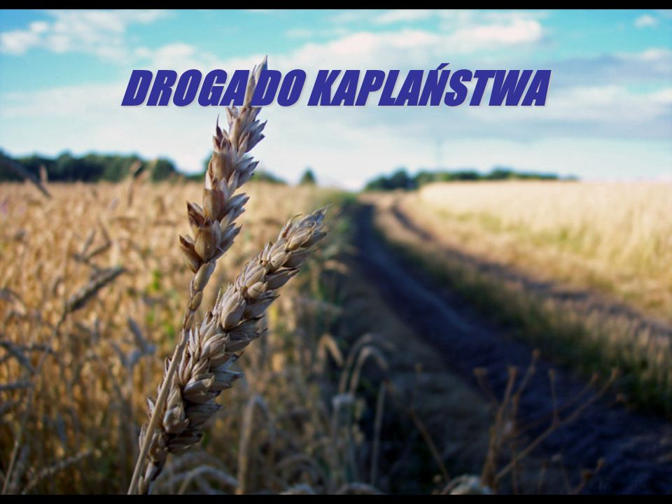 DROGA DO KAPLAŃSTWA